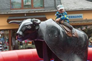 bullriding_black-devil_germanbull_02