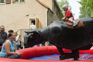 bullriding_black-devil_germanbull_01